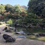 京都の醍醐寺の紅葉は最高
